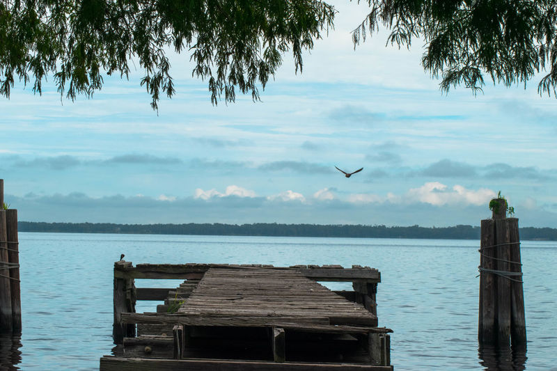 Lake Monroe Dock Lake View Water EyeEm Best Shots EyeEm Best Shots - Nature GayneGirlPhotography