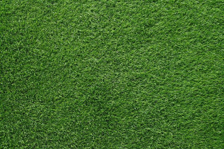 green grass background, artificial grass on soccer field Golf Recreation  Abstract Artificial Backdrop Background Environment Field Garden Grass Lawn Meadow Nature Park Plain Plant Playing Field Season  Soccer Space Sports Stadium Surface Turf Yard