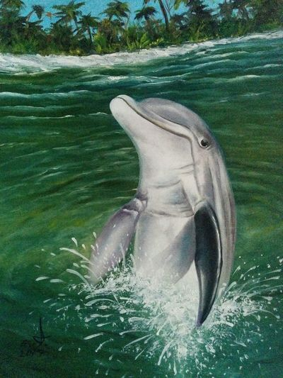 "Our best friends in water , Dolphins oil on canvas 14""_20"" Sea Life Animals In The Wild Animal Themes Swimming Water Nature Dolphin Fine Art Original Art My Art Collection Oil Painting ArtWork Fredom Art, Drawing, Creativity Drawing My Best Friends ❤ Portrait My Animal Collection Close-up Friendship. ♡   Beauty In Nature My Bestfriend ❤ Love♥ Koi. With"