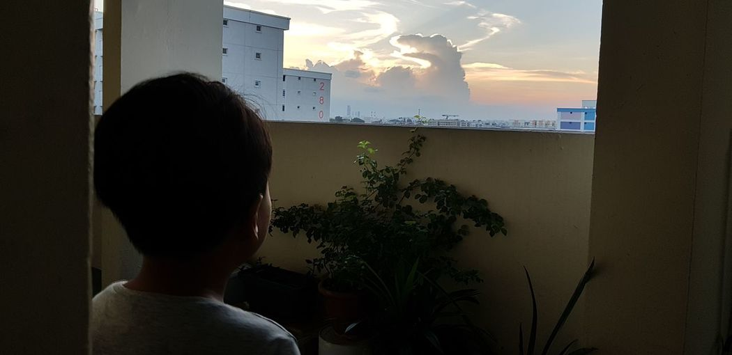 Nephew looking at beautiful sundown clouds and get your imagination run wild. animals on the clouds Orange Sky Imagination Boy Beautiful Nature Animals In The Wild Sunset Headshot Rear View Arts Culture And Entertainment Sky Cityscape Skyline Residential District Residential Structure