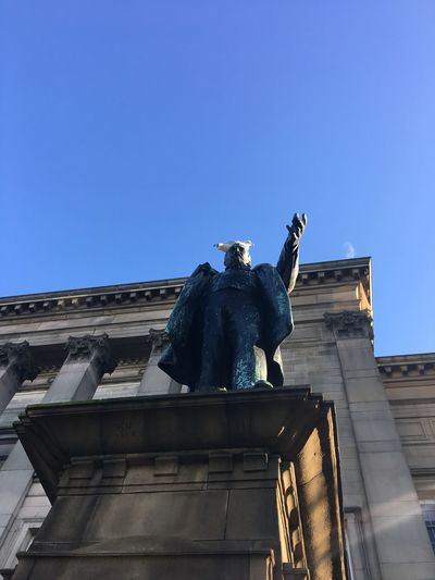 Put a bird on it Liverpool Bird Statue Low Angle View Sculpture Human Representation Art And Craft Architecture Male Likeness Built Structure Clear Sky Blue Outdoors Monument Day Building Exterior Travel Destinations No People Sky
