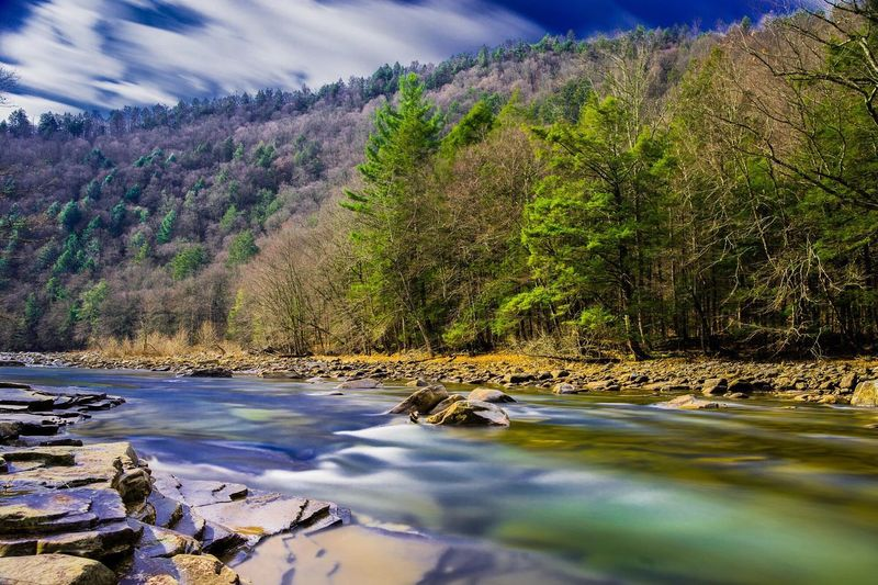 Bring back the leaves Mountains Fall Creek Landscape Water Long Exposure Forest