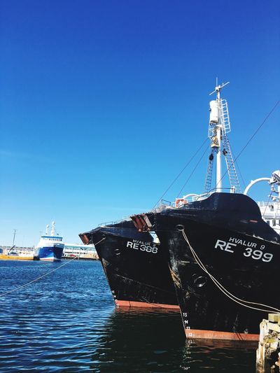 Fishing Boat Harbour Reykjavik Blue Sky Walking Around Iceland_collection Iceland216