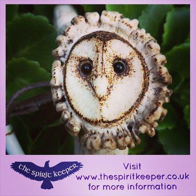 Barn owl says it all! Spiritual , Thespiritkeeper Owl , animism, taxidermy