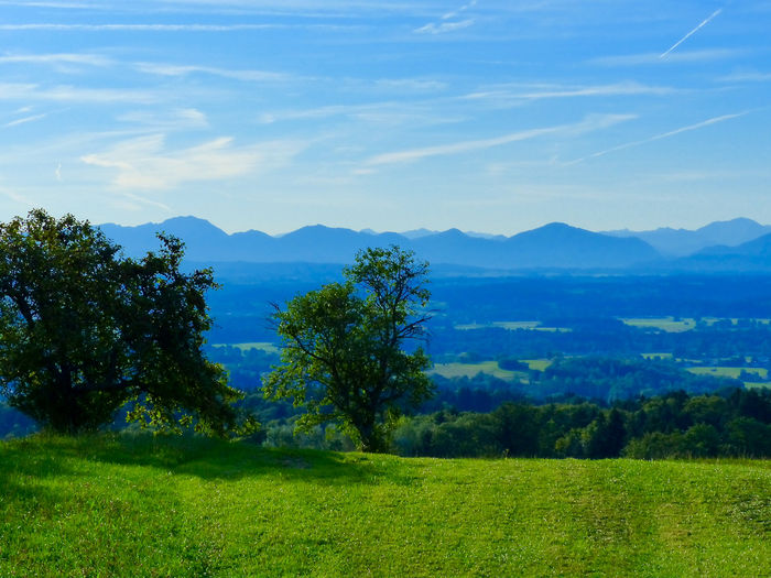 From My Point Of View Landscape_photography Landscape_Collection Mountain View Hugging Trees Bavaria