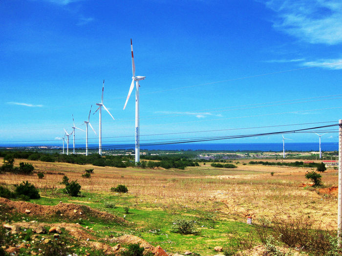 Beautiful Day Beauty In Nature Binh Thuan, Viet Nam Blue Field Fuel And Power Generation Landscape Nature Sky Tuy Phong, Binh Thuan Tuy Phong, Binh Thuan, Viet Nam Vacations Wind Power Wind Turbine