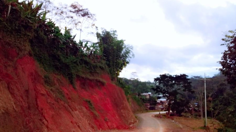 Red Soil Red