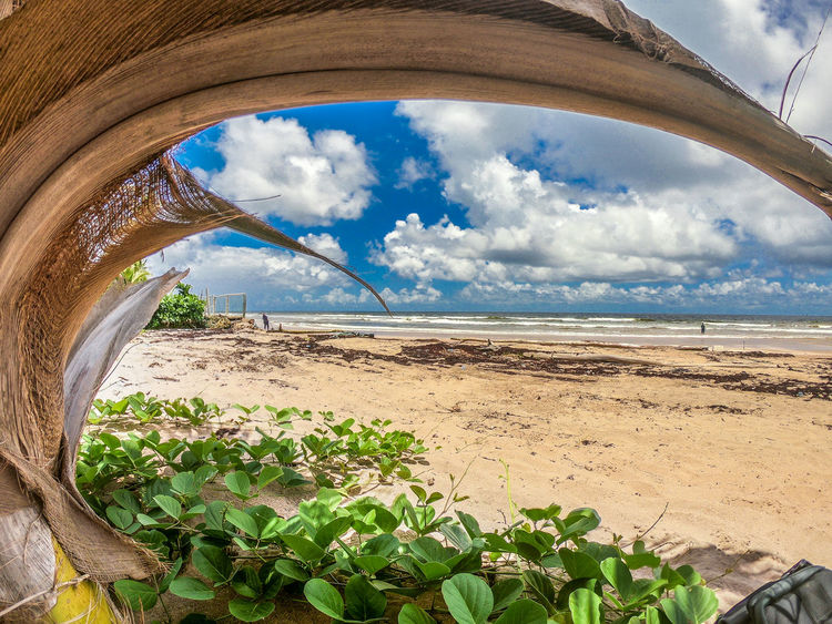 Landscape_Collection Trinidad And Tobago Arch Arid Climate Beauty In Nature Blue Cloud - Sky Day Environment Horizon Land Landscape Landscape_photography Mayaro Nature Outdoors Plant Scenics - Nature Sky Sunlight Tranquil Scene Tranquility Water A New Perspective On Life