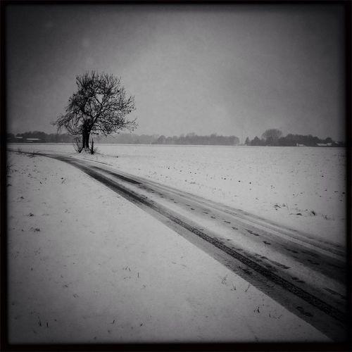 Kempen -Winter 2013