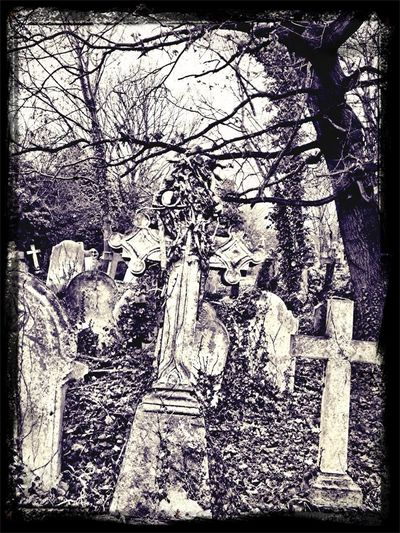 Not very festive I know but a great gothic look to this part of the cemetery.