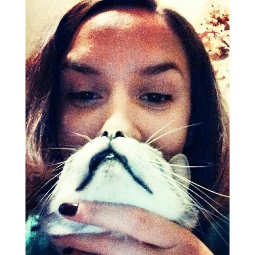 The cat's gonna kill me Cat Catbeard Selfie Hrodna grodno