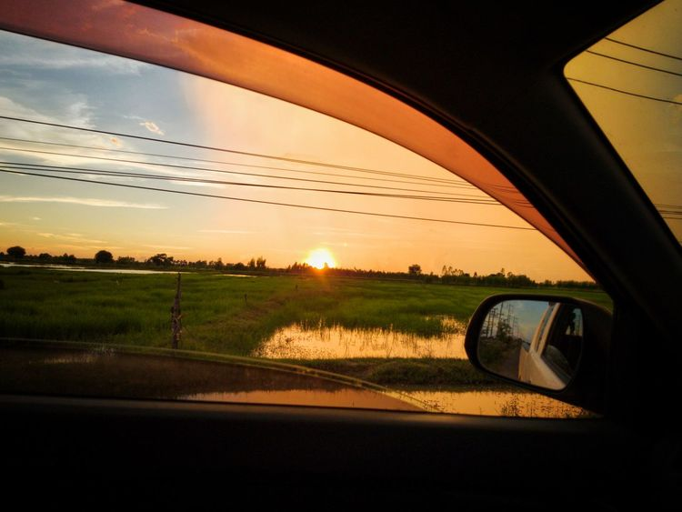 Sunset at ricefield through the car window Sunset Outdoors Nature Cloud - Sky EyeEmNewHere The Week On EyeEm Landscape Silhouette Sky Evening Sunset Evening Scene Rice Field Plantation Agriculture ASIA Travel Journey Summer Road Tripping