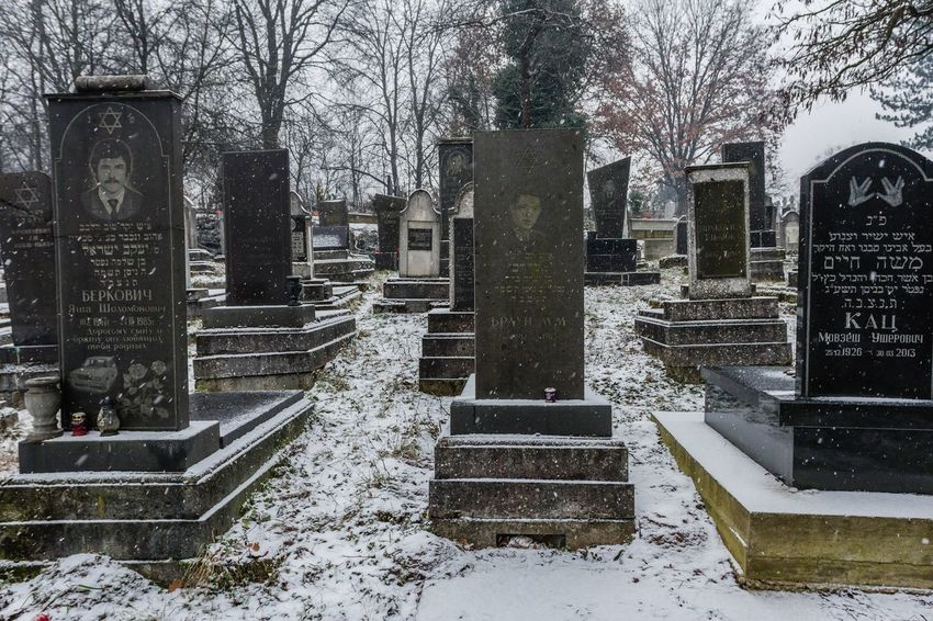 Cemetery Cemetery Photography Grief Memorial Spirituality Winter Bare Tree Cemetary Cemetery Cold Temperature Day Graves Gravestone Graveyard History Jewish Cemetary Jewish Cemetery Memorial No People Outdoors Sadness Snow The Past Tombstone Winter