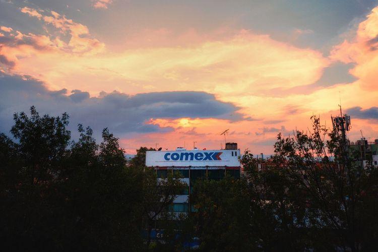 COMEX Comex Pinturas Recubrimientos Pinturas Comex CDMX ❤ México Distrito Federal Mexico City Chilangolandia Tree Sunset Text Sky Cloud - Sky