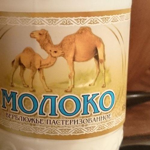 Из любопытства попробовал верблюжье молоко казахстанского производства. Странный вкус. Чем-то похоже на айран, но айран вкуснее.