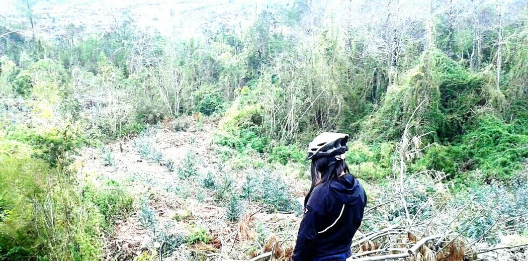 Buscando un poco de tranquilidad ! Relaxing Bosque Y Vida Enjoying Life Un Paseo En Bicicleta Bicicleteando 📷🚲 Paz ✌ Lomejooor♥♥ Naturelovers! Free