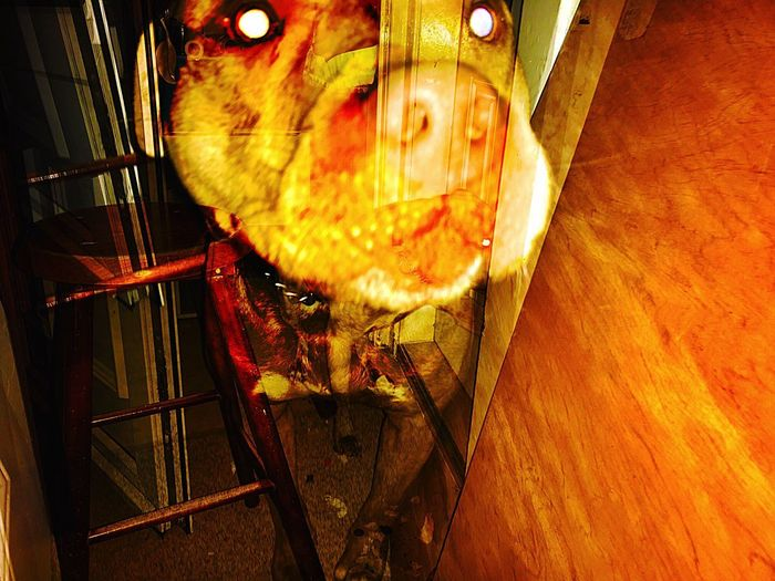 Overlays Layers Big Baby Pitbull My Boy Dogs Of EyeEm Animal Metal Pattern Nature One Animal Animal Themes Day Animal Wildlife Animals In The Wild Textured  Water