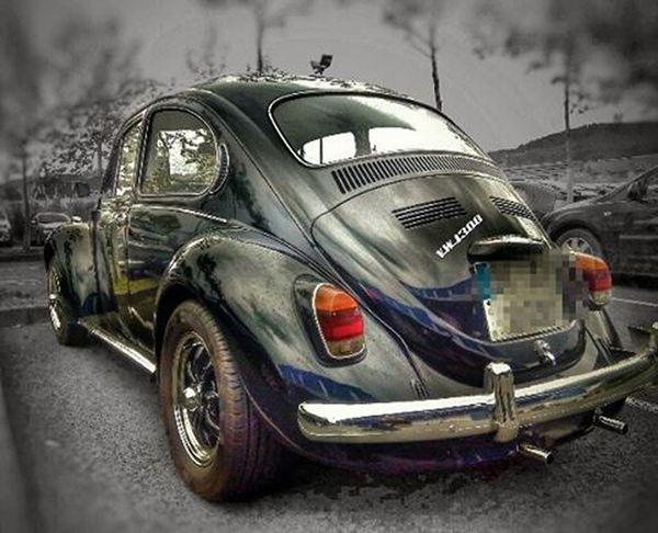 VW Escarabajo ( vista trasera /back view).... ⚪〰⚪〰⚪〰⚪〰⚪〰⚪〰〰⚪〰⚪〰⚪〰⚪〰⚪〰⚪ Worldcolours_splash Match_splash Gallery_of_splash World_splash Fotofanatics_colorsplash Fotofanatics_hdr Total_shot Total_hdr Ok_hdr Hdr_transports Total_vehicles World_besthdr Kings_hdr Tv_hdr Splash_mania__ Splashcolorcars Lucky_hdr Ptk_vehicles Loves_vehicles Stars_hdr Hdr_stop Igw_hdr Hdr_professional ✴🔹✴🔹✴🔹✴🔹✴🔹✴🔹✴🔹✴🔹✴🔹✴🔹✴🔹✴🔹✴🔹✴🔹✴ Gracias por seguirme @photodviles79 .Mis imágenes también visibles en las etiquetas Daivison79 y Dacphoto2016
