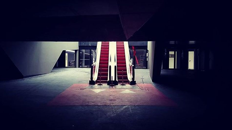 Escalator UP to 2016 ! Happy New Year .... Igparis Ig_paris Igaddict Architecture Archilovers Architectureporn Architecturelovers Rsa_architecture Nightcity Rsa_streetview Parisjetaime Parisiloveyou Cinema Archired Minimaliste Minimalmood Minimalporn Minimalistic Rsa_minimal Ig_minimalshots Perspective Symetric Escalator Escalators MechanicalStairs