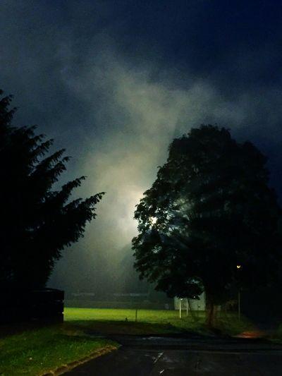 Herbstnacht Nature Night Night Lights Tree Fichtelgebirge