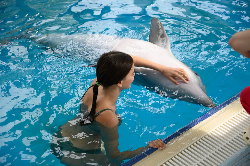 Woman swimming with dolphin in pool