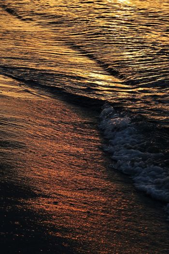 Sea Motion No