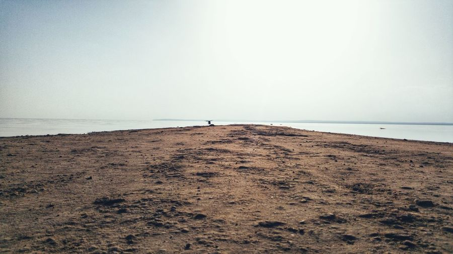 Sea Beach Horizon Over Water Sand Water Tranquility Sky Nature Outdoors Day Beauty In Nature Vacations Scenics One Person People One Man Only Only Men Animal Themes