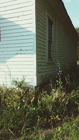 Abandoned Schoolhouse with Wild Flowers growing all around it. Sunlight Shadow