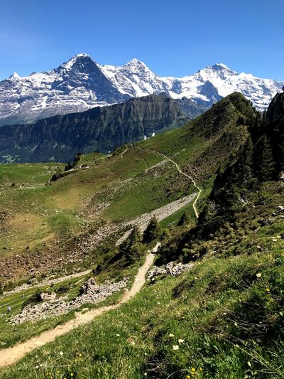 Mighty Jungfrau