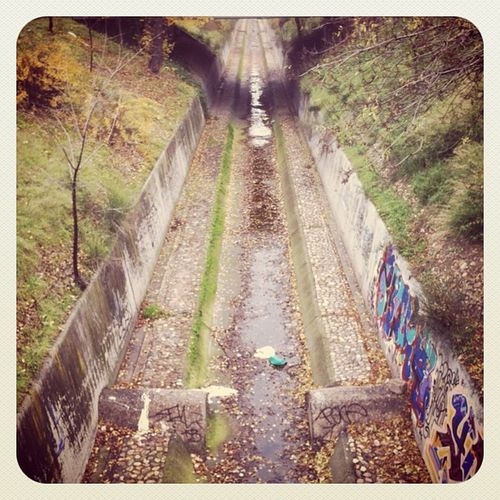 Canal #madrid #canal #winter #water #leaves #green #agua #verde #igscout #_wg #instapic #instagramer #insta_crew #instamillion #tagstagramers #instago #instagroove #igersmadrid #picoftheday #insta_ñ #iphonesia #instamood #earlybirdonly #earlybirdlove #lat Igersmadrid Instago Water Insta_crew Green Igscout Leaves Earlybirdlove Instagramer Winter _wg Canal Instagroove Madrid Instapic Instamillion Iphonesia Tagstagramers Picoftheday Insta_ñ Agua Earlybirdonly Verde Instamood Latergram