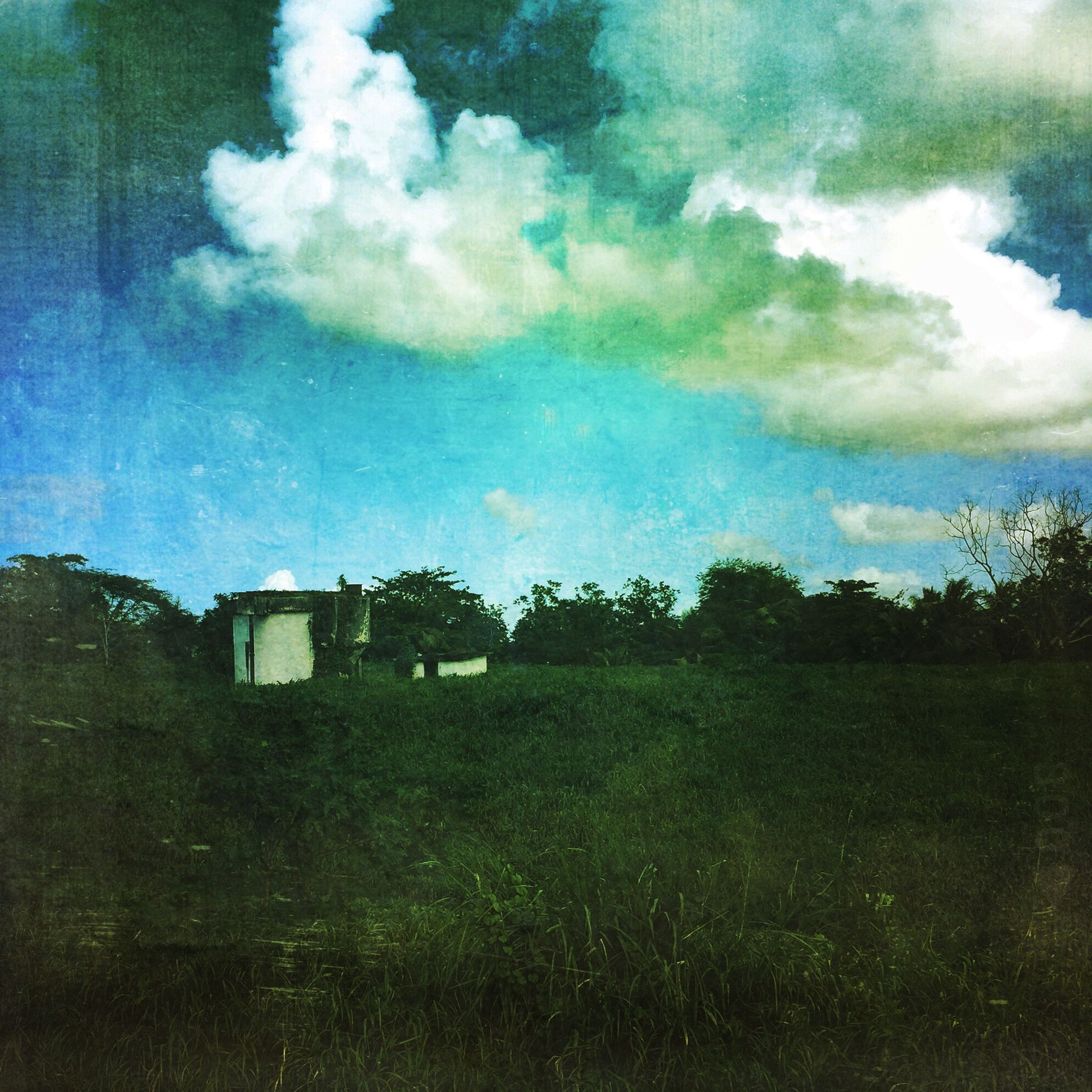 sky, building exterior, built structure, cloud - sky, architecture, field, house, tree, grass, landscape, nature, cloud, grassy, tranquility, growth, cloudy, tranquil scene, beauty in nature, blue, green color