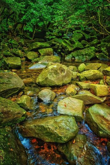 Backgrounds Full Frame Pattern No People Abstract Nature Textured  Beauty In Nature Getting Creative EyeEm Gallery Check This Out 😊 Hellow World Artistic Expression Exceptional Photography My Unique Style Getting Inspired EyeEm Nature Lover Tranquil Scene Wilderness Detail EyeEm Best Shots Stream - Flowing Water Freshness Tranquility Beauty In Nature Water