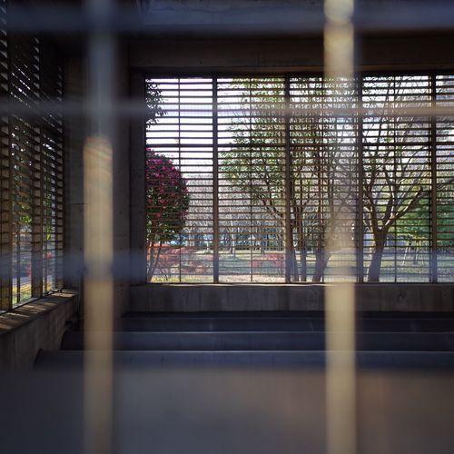 Through The Window Mesh Park Walking Around Streetphotography