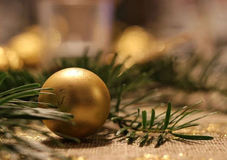 Christmas Bauble Bauble Gold Colored Selective Focus Close-up Gold Colored Easter Focus On Foreground No People Nature Gold Celebration