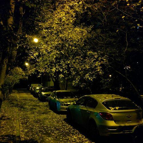 Ночь фонарь Осень 🍁🍂
