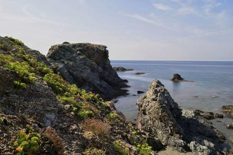 Landscape Landscape_Collection Beach Tree Sand Rock - Object Lava Sky Horizon Over Water Rock Formation Coastline
