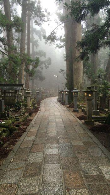 World heritage Kouyasan Japanese Heritage