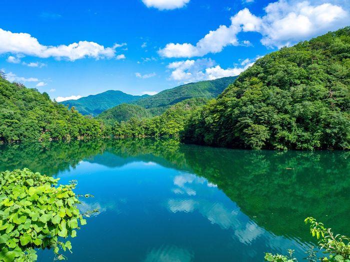 Okutama Lake Okutama Lake Water Reflection Sky Plant Cloud - Sky Tree Tranquility Scenics - Nature Beauty In Nature Blue Nature Green Color Lake Tranquil Scene No People Mountain