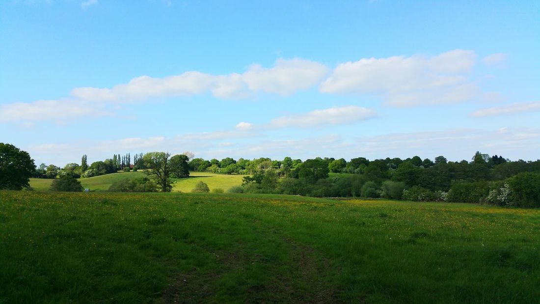 Pretty view Spring Nature Walk Beautiful Fields Landscape View Samsung Note 4 Samsungphotography Sunny Day