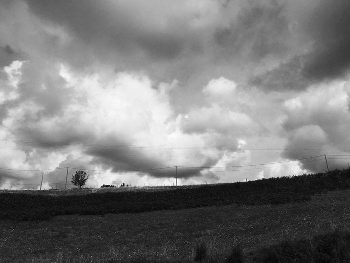 Paysage Blackandwhite Landscape