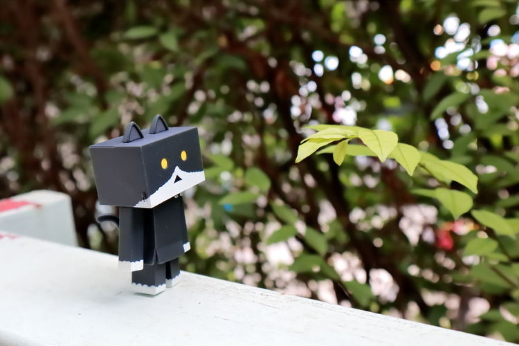 Nyanbo Nyabo Danbo Danboard Meawstery Cat Close-up Day Focus On Foreground Growth Leaf Nature No People Outdoors Plant Selective Focus Sunlight Toy Tree EyeEmNewHere Plant Nature Creativity Robot Tree Representation