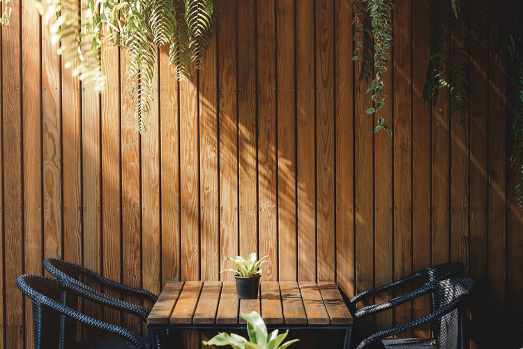 Wooden Wall in Restaurant and Cafe, Contemporary Interior Design. Natural Daylight Plant Wood - Material Seat Nature Chair Fence Boundary No People Architecture Day Growth Potted Plant Leaf Absence Built Structure Relaxation Empty Sunlight Plant Part Outdoors Palm Leaf Wall Restaurant Cafe Coffe Shop