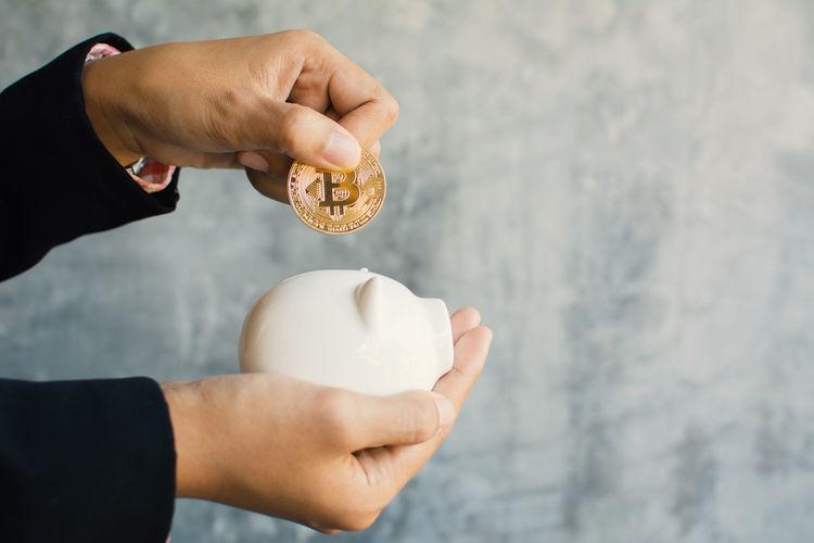 Business Office Piggy Bank Financial Holding Human Hand Savings