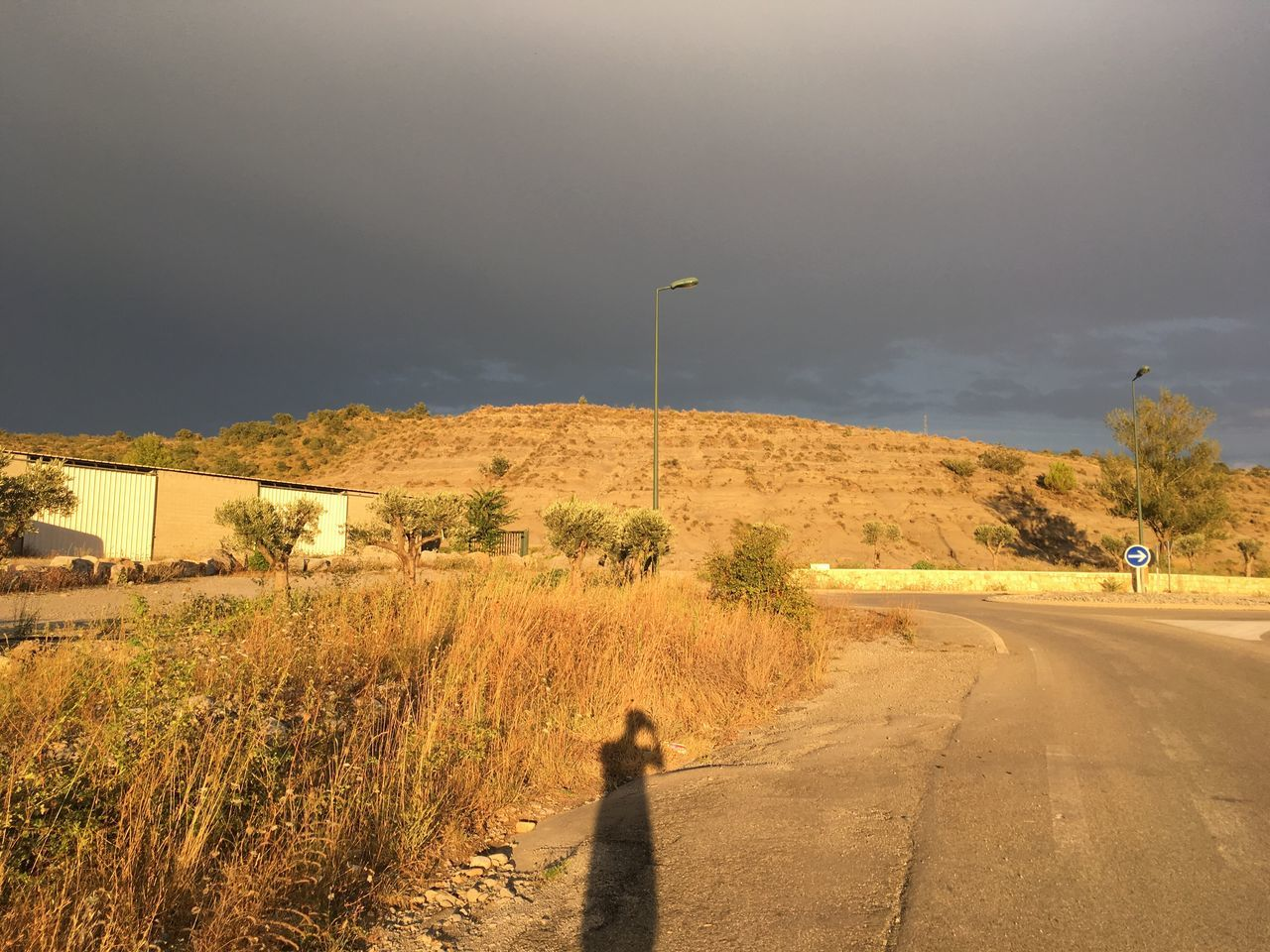 road, the way forward, real people, one person, landscape, outdoors, transportation, sky, sunlight, nature, adventure, shadow, day, mountain, tree, mammal