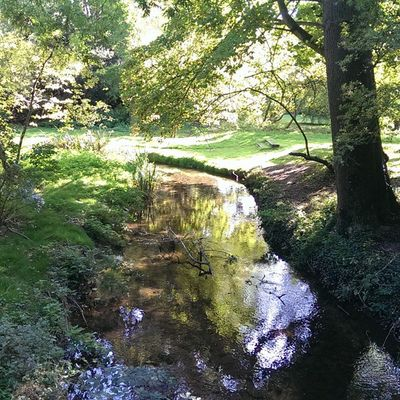 Walshingham Walshinghamgrounds Walshinghamabbey Grounds river green river stream nofilters footpath HTC htc1 dayout