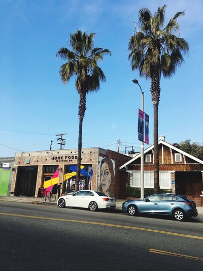Built Structure Building Exterior Architecture Palm Tree Land Vehicle Transportation City Tree Sky Outdoors Day No People Los Angeles, California Abbot Kinney
