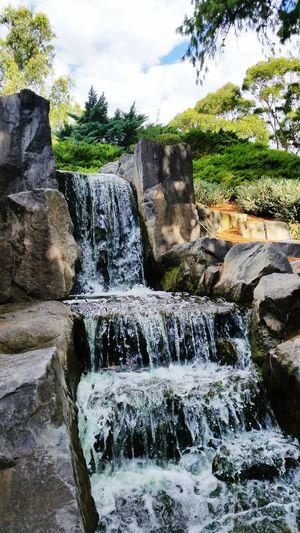 Japanese Garden Waterfall Nature Stone Water Eye4photography  EyeEm Nature Lover Nature Australia