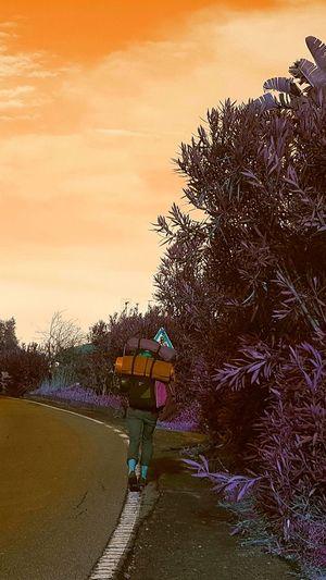 Chissa? Outdoors Road Sign Beauty In Nature Giromondo #urbanana: The Urban Playground
