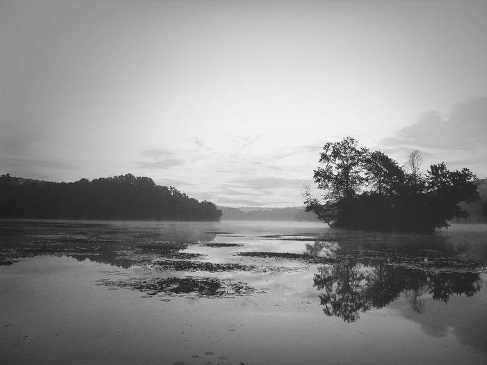 Nature Blackandwhite Black And White Lake