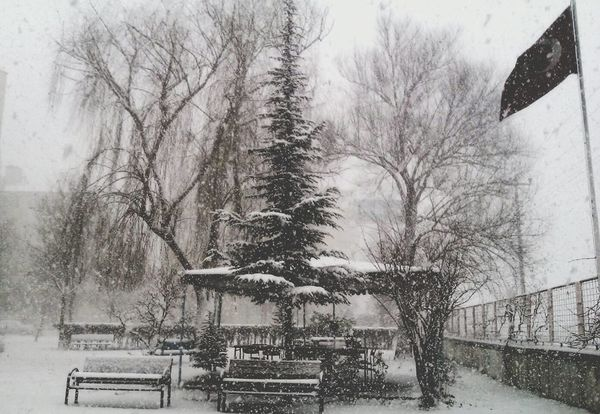 Winter Trees Supernatural Hello World Turkey Snow ❄ Hi! ComeToSeeTurkey Aksaray Enjoying Life
